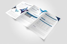 isatis-capital-brochure-couverture-design-graphique-plaquette-agence-de-communication-verso