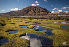 Ardgour Salt Marshes, Highland