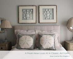 Framed Intaglios and Sand dollar pillows
