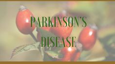 Health Benefits, Active Ingredients and Side Effects of Medicinal Herbs for Parkinson's Disease Treatment and Relief