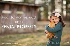 How to Homestead on a Rental Property   The Paleo Mama
