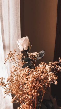 Science Discover Light brown aesthetic wallpaper iphone ideas for 2019 Beige Aesthetic Flower Aesthetic Aesthetic Vintage Aesthetic Art Flower Background Wallpaper Flower Backgrounds Wallpaper Backgrounds Hd Wallpaper Iphone Locked Wallpaper Peach Aesthetic, Brown Aesthetic, Flower Aesthetic, Aesthetic Vintage, Aesthetic Drawing, 70s Aesthetic, Aesthetic Anime, Aesthetic Pictures, Aesthetic Collage