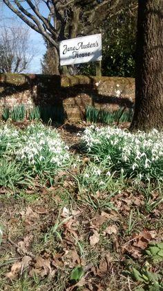 #Spring #snowdrops #JaneAustensHouse