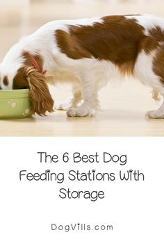 Dog feeding stations with storage compartments really take the hassle out of finding the perfect place to keep your pup's food.They keep all the food stored right with your dog's dinner bowl.