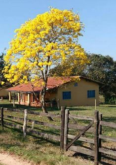 Pisajes Village House Design, Village Houses, Country Barns, Country Life, Episode Backgrounds, Green Sky, Autumn Scenery, Nature Pictures, Landscape Photos