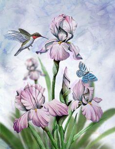"""Iris and Hummingbird"" by Thomas Wood"