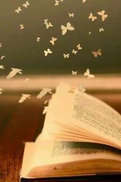 Fly away with books...