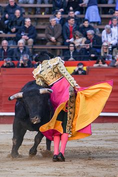 Torero Miguel Ángel Perera. Plaza de toros de Valencia. Fallas 2018. #torero #toros #plazadetoros #valencia  simon casas productions
