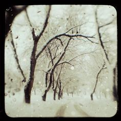 snow... magical.  Even though I hate the cold, I need some of this soon.