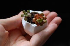 tiny clay plant pot tutorial: http://transientexpression.com/tutorial-tiny-polymer-clay-plant-pots/#