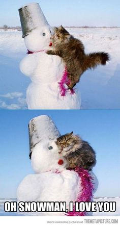 Oh Snowman…this kitty kinda looks like Isis! Except Isis would be on a beach in Key West, she loves the heat.