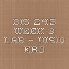 BIS 245 Week 3 Lab – Visio ERD