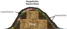 Haygulkulture - using hay instead of wood will give you a bed that supplies moisture and nutrients for about five years instead of the log's ten to twenty, plus. By Gerald Benard. www.permies.com - See more at: http://www.inspirationgreen.com/hugelkultur.html#sthash.OqO6whNY.dpuf