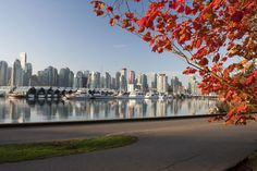 What Is Vancouver Like in October?