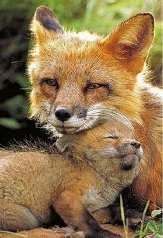 Mutter kuschelt mit ihrem Baby.....süüüüüüüüüüüüüüüüüß