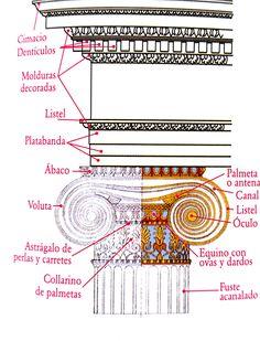 Orden jónico. Surge a finales del siglo VII a.C. y se expande a comiezos del siglo VI a.C. por las costas de Asia Menor e islas del Egeo. Con respecto al orden Dorico presenta algunas diferencias con mayor decoración y un canon más alargado.