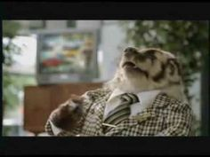 Badger Commercials .......... Tired Of Being Badgered? ..... LOL - cracks me up every time!!