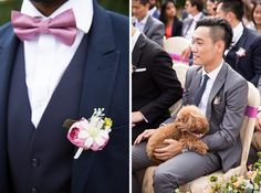 pink and navy wedding inspiration with pink and daisy buttonhole, and dogs at the garden wedding at Four Seasons Hotel Hampshire Cat Wedding, Wedding Wishes, Garden Wedding, Four Seasons Hotel Hampshire, Chinese Wedding Tea Ceremony, Traditional Chinese Wedding, Wedding Photographer London, Multicultural Wedding, Relaxed Wedding