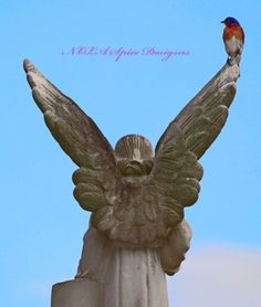 Bird's Eye View New Orleans Cemetery Photography
