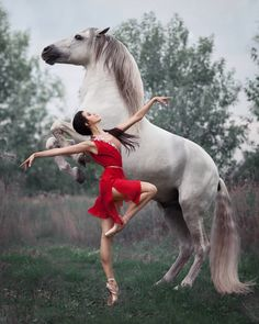 """A truly beautiful photo of ballet royalty and equine excellence. Principal dance… A truly beautiful photo of ballet royalty and equine excellence. Principal dancer Anastasia Limenko with the extraordinary Andalusian horse """"Brioso"""" Photo ©. Pretty Horses, Horse Love, Beautiful Horses, Animals Beautiful, Cute Animals, Ballet Beautiful, Horse Girl Photography, Dance Photography, Photography Classes"""