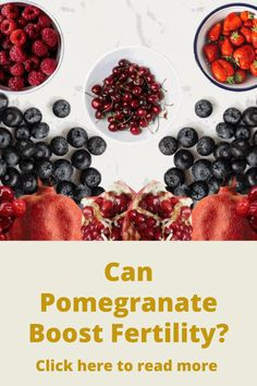 Fertility Help, Fertility Foods, Female Fertility, Conception Tips, How To Treat Pcos, Pomegranate Seeds, Fruit Drinks, Nutrition Program, Superfood