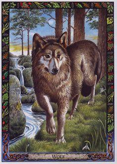 Druid Animal Oracle Deck by Bill Worthington | LRS - The Druid Animal Oracle] Painted by Bill Worthington, Wolf ...