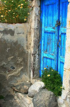 Decayed blue wooden gate and wall with wild daisies. Oia, Santorini, Cyclades, Greece