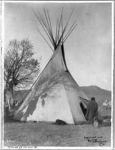 Indian Teepee Vintage Montana 1905 Reprint Of Old Photo Native American Photos, Native American History, Native American Indians, Crow Indians, Indian Teepee, Native Indian, Blackfoot Indian, Native Art, Race In America