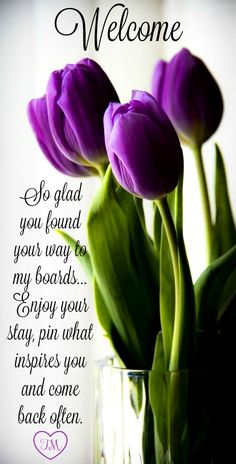 Welcome...Pin what inspires you, I have No Pin Limits <3 Tam <3