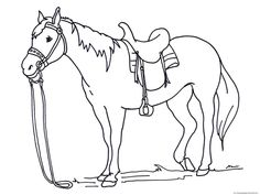 Horse Coloring Pages for Adults . 30 Inspirational Horse Coloring Pages for Adults . Coloring Free Horse Coloring Pages Printableres Marvelous Horse Coloring Pages, Cat Coloring Page, Coloring Pages To Print, Free Printable Coloring Pages, Colouring Pages, Coloring Pages For Kids, Coloring Sheets, Coloring Books, Free Coloring