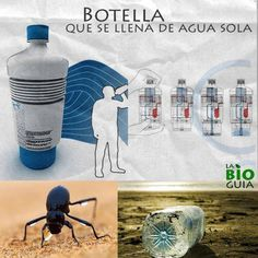 Autorefill water bottle / Botella de agua que se rellena sola