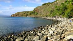 Maui Fun Things to Do: Snorkeling at Honolua Bay
