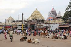 Ratha Yatra in Puri or or the Chariot Festival is a major Hindu festival associated with Lord Jagannath. Learn how and when it is celebrated in Jagannath Temple Puri, Lord Jagannath, Rath Yatra, Heath Ledger Joker, Best Weekend Getaways, Bay Of Bengal, Hindu Festivals, Most Visited, India