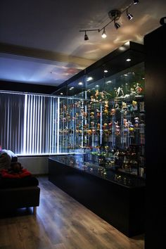 A display case presents the inner-self of the creator. With a look at the display case, you can know the person inside. There are DIY display case ideas. Wooden Display Cases, Wooden Shelves, Toy Display, Display Ideas, Glass Shelves, Diy Interior, Interior Design, Action Figure Display Case, Countertop Display Case