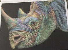 Rhinoceros by Gloria Hurd Lowell