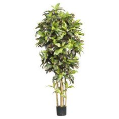Nearly Natural 6 ft. Croton Silk Tree - 5211