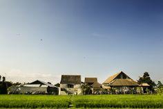 The Temple Of Enthusiasm Canggu Bali, Deus Ex Machina, Temple, Surfing, House Styles, Street Art, Surf, Temples, Surfs