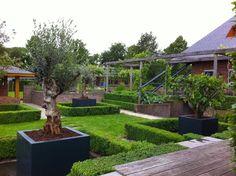 Aménager vos allées de jardin avec des bacs en polyester