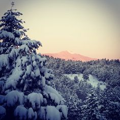 What a beautiful morning with a foot of new snow!