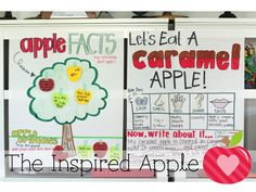 It's time for fall themes! Make your apple unit studies even more fun and engaging with these ten apple activities perfect for kids in kindergarten, first grade, and second grade! Your elementary students will love the various apple activities that enhance ELA, math, and science curriculum. They'll learn about fact versus opinion, traits of fiction, counting, Johnny Appleseed, and more! Plus, check out the FREE apple unit lesson plans, five frame activity, and apple craft!