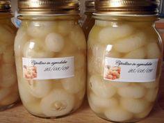 Cipolline in agrodolce. Cucina italiana.