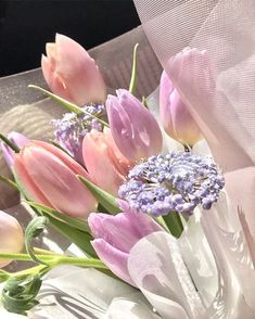 Spring Aesthetic, Nature Aesthetic, Flower Aesthetic, Beige Aesthetic, Flowers Nature, My Flower, Beautiful Flowers, Pastel Flowers, Pink Tulips
