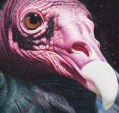 Wildlife Artist David N. Kitler - Originals (Larger than Life ...