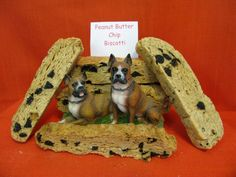 Peanut Butter Chip Biscotti - The chips are carob but dogs don't know they are not chocolate.     Available at www.nimahsnibbles.com