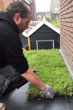 Makkelijk en duurzaam: een groen dak van sedum - Blooming Home What To Do Outside, Earth Sheltered Homes, Plant Projects, Natural Building, Small Backyard Landscaping, Rooftop Garden, How To Run Longer, Garden Inspiration, Overwintering