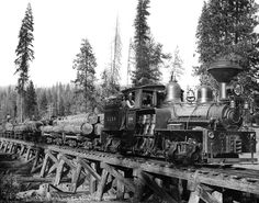 Shaver Lake Rail Road locomotive, hauling logs from the mill, early 1900s. very cool train!!!