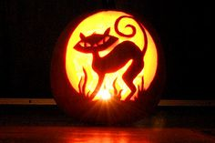 Google Image Result for http://www.bandofcats.com/wp-content/uploads/2009/10/cat-pumpkin-carving_062.jpg