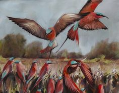 Nicole Sanderson Paintings Carmine Bee Eaters. Detail. Oil on Canvas. FOR SALE