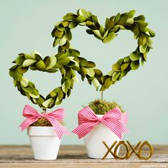 Crepe Paper Heart Shaped Topiary