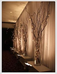 LOVE THIS!!  Gold Glitter Spray paint to add flair to the branches + lights ties togeather or in tall vases around the sight!!!!